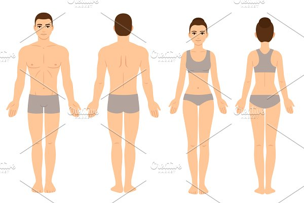 Download Male and Female body chart