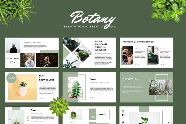 Download Botany Powerpoint Presentation