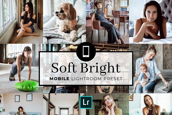 Download Mobile Lightroom Preset Soft Bright