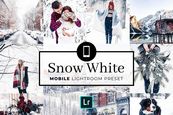 Download Mobile Lightroom Preset Snow White