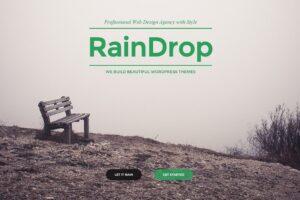 Download RainDrop - A Multipurpose Theme