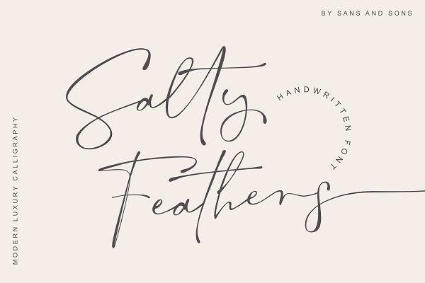 Download Salty Feathers - Modern Script