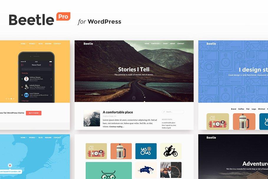 Download Beetle Pro for WordPress