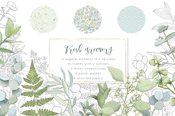 Download Fresh greenery frames and patterns