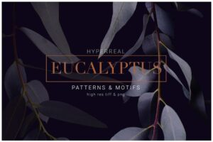 Download Eucalyptus