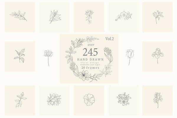 Download Botanical Hand Drawn Designs