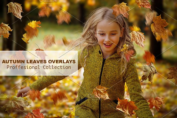 Download CHRISTMAS SALE! Leaves Overlays