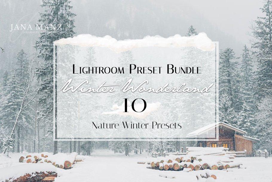 Download Winter Wonderland Lightroom Preset